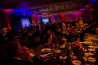 WIA_awards2019_163